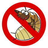 No termites sign Royalty Free Stock Photo