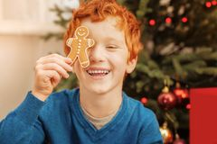 Adorable curly haired child playing with gingerbread man. No time for worries. Portrait of a radiant redhead boy joking and smiling cheerfully while having fun Stock Photo