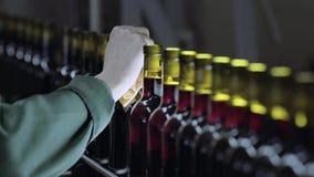 No trabalho humano da fábrica do vinho na linha do transporte vídeos de arquivo