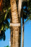`NO TRESPASSING` sign on coconut palm tree in the island Stock Photos