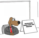 No tricks. Business illustration of a manager dog that does not do tricks Stock Photography