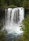 No Turning Back. Kayaker descends Koosah Falls in Oregon Royalty Free Stock Photography