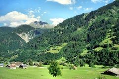 No vale do Reno anterior em Graubunden Imagens de Stock Royalty Free
