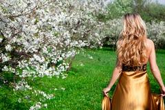 No vestido do ouro Fotografia de Stock Royalty Free
