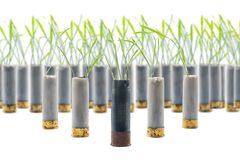 No war concept photo.Sprouts of grass grows out of gun cartridge shotgun. Black cartridge in middle. White background. No war concept photo. Sprouts of grass royalty free stock photography
