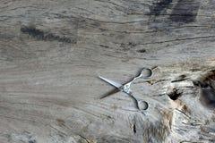 nożyce na starym drewnie Obrazy Stock
