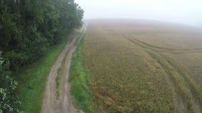No zangão enevoado da aterrissagem da manhã na estrada rural do cascalho filme