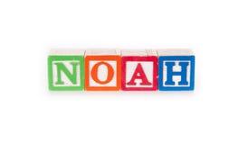 noah Fotografía de archivo libre de regalías