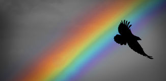 Free Noah Rainbow And Raven Stock Photo - 38438470