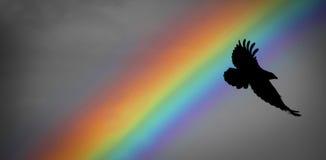 Noah-Regenbogen und -rabe Stockfoto