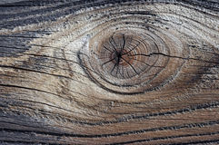 Nob - knag. Detail of the wood texture with nob - abstract Royalty Free Stock Image