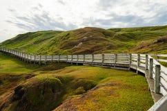 Nobbies Boardwalk, Philip wyspa, Wiktoria, Australia Zdjęcia Stock