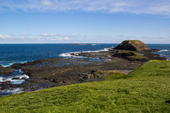 The Nobbies. A view of the Nobbies, Phillip Island, Victoria, Australia Royalty Free Stock Photography