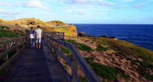 Nobbiesen, Phillip Island kust- område Royaltyfri Fotografi