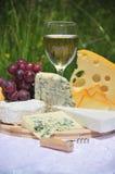 nobel vit wine för ost royaltyfria bilder