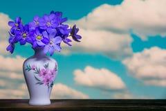 Nobilis Schreb de Hepatica de bouquet de fleur Photographie stock libre de droits