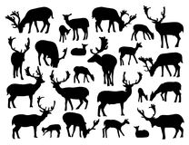 Noble deer silhouettes set. Isolated on white background. Vector illustration for your wildlife design Stock Image