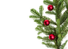 Noble fir branch with red ornaments Royalty Free Stock Photo