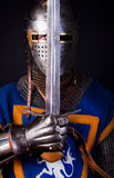 Noble knight with sword Royalty Free Stock Photo