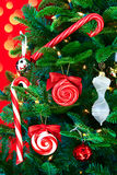 Noble Pine Christmas Tree With Candy Canes Stock Images