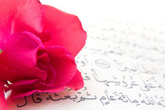Noble Qur'an and rose Stock Image
