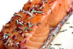 Noble salmon filet with herbs Royalty Free Stock Photography