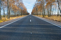 A road Royalty Free Stock Image