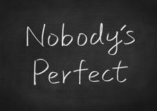 Nobody& x27; s perfecto Foto de archivo libre de regalías