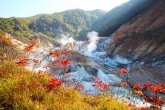 Noboribetsu, hokkaido, Japonia przy Jigokudani piekła doliną obraz royalty free