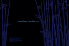 Noc bambusa las Zdjęcie Royalty Free