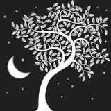 noc drzewo royalty ilustracja