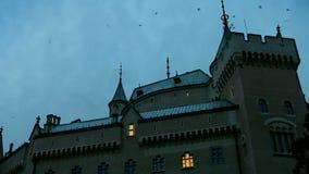 Noc kasztel Coś zaskakiwał kierdla ptaki od dachu zdjęcie wideo
