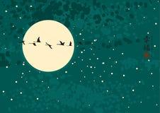 Noc krajobraz Obraz Stock