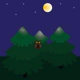 Noc las i księżyc w pełni Obraz Stock