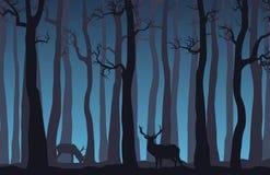 Noc lasu krajobraz z nagimi drzewami i dwa rogaczem Obrazy Royalty Free