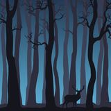 Noc lasu krajobraz z nagimi drzewami i rogaczem Zdjęcia Stock