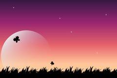 noc lato ilustracji