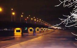 Noc most przez rzeki noc zaświeca zimę i zamarznięta rzeka rozgałęzia się w śniegu zdjęcie royalty free