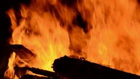 Noc ogienia płomienia tło zbiory