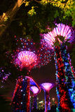 Noc ogród podpalanym drzewem Obraz Royalty Free
