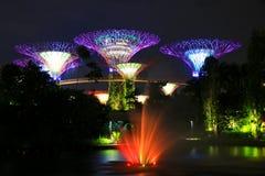 Noc ogród podpalanym drzewem fontanną & Zdjęcia Royalty Free