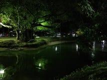 Noc park jest piękny zdjęcie royalty free