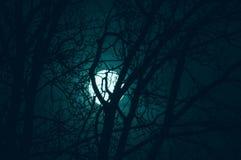 Noc tajemniczy krajobraz w zimnie tonuje - sylwetki nagie gałąź przeciw księżyc w pełni s dramatycznej chmurnej nocy i Obraz Stock
