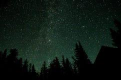 Noc w lesie obrazy royalty free