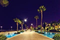 Noc widok deptak aleja z wodą i drzewkami palmowymi na stronie zdjęcie royalty free