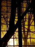 Noc widok od okno z kratownicą Zdjęcie Stock