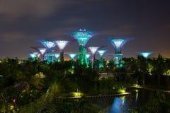 Noc widok ogrodowy Singapore Zdjęcie Stock