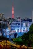 Noc widok przy Mori ogródem podczas zimy iluminacji z Tokio wierza jako tło, Tokio, Japonia fotografia royalty free