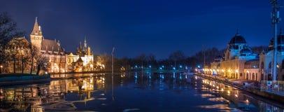 Noc widok Vajdahunyad kasztel z Lodowym lodowiskiem, Budapest Fotografia Stock