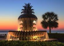 Noc widoku nabrzeża fontanna Zdjęcie Stock